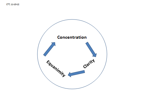 Fig 1: concentration clarity equanimity diagram