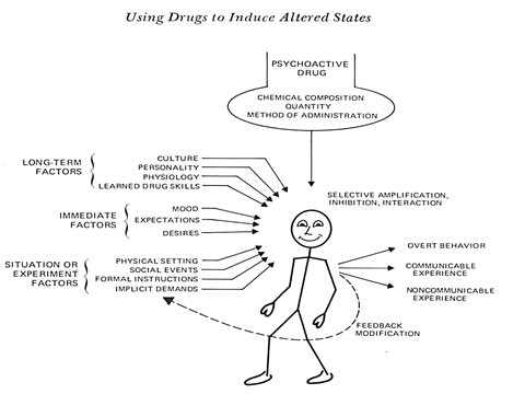 Fig 2: Factors affecting marijuana intoxication