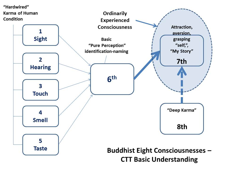 Buddhist Eight Consciousness in CTT's View