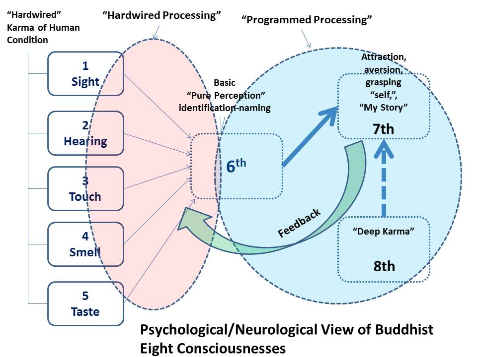 Psychological and Neurological View of Buddhist Eight Consciousnesses