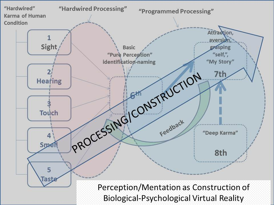Perceptoin & Mentaton as a Construction of Biological Psychological Virtual Reality