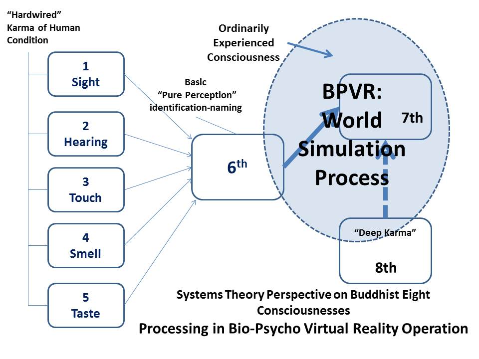 Biological Psychological Virtual Reality Processing