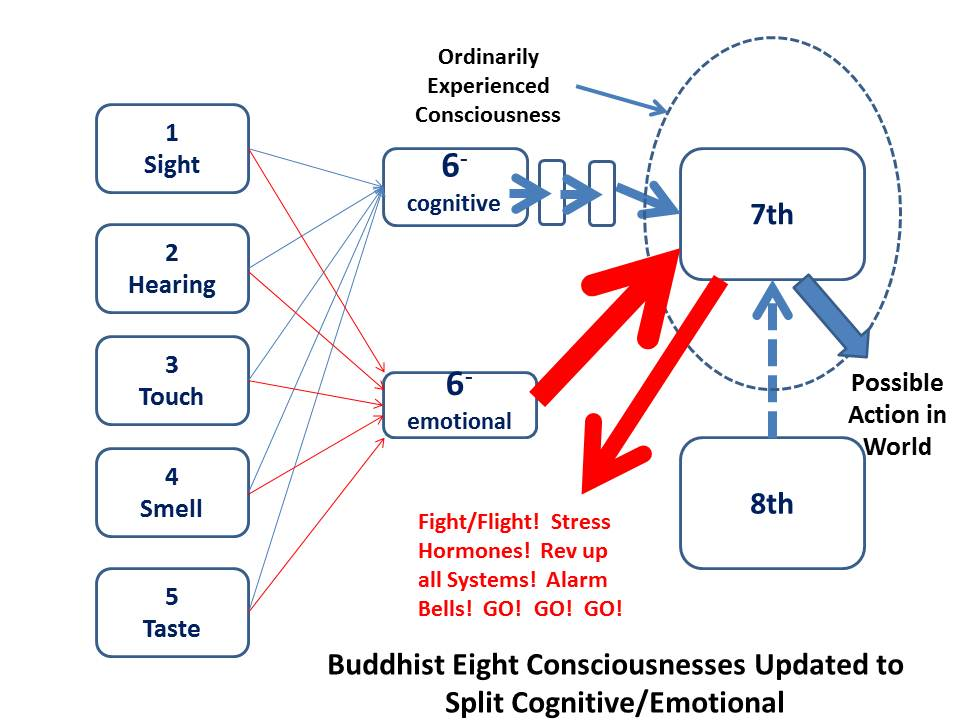 Buddhist 6th Consciousness Modified to Split Cogniive and Emotional Stimuli